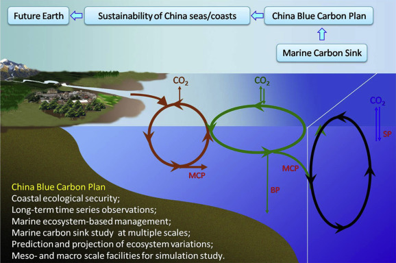 Main foci of China Future Ocean Alliance and its connection with the Future ...