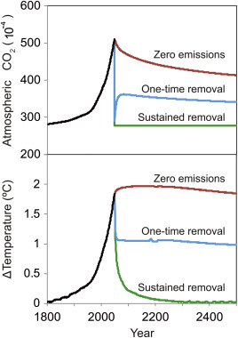 Model-simulated temporal evolution of atmospheric CO2 and change in surface air ...