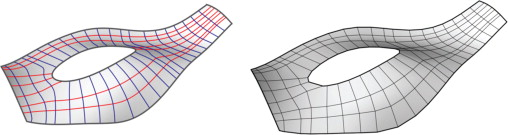 (Left) conjugate curve network (right) preliminary BDMesh.
