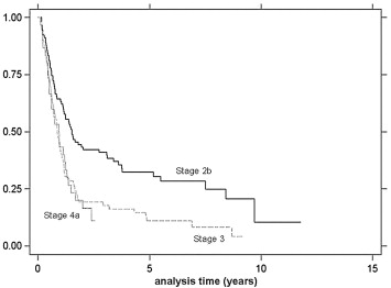 Kaplan–Meier analysis of overall survival by stage.