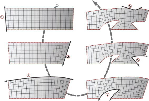 Variations of BDMesh results ranging from single to multiple boundary ...