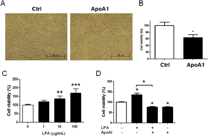 Apolipoprotein A1 (ApoA1) in vitro reduced the cell proliferation of MKN45 cells ...