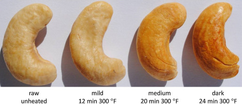 Representative images of cashew nuts following heating at 300°F for 12min ...