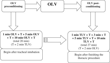The model of OLV preconditioning combined with OLV post-conditioning. OLV = ...